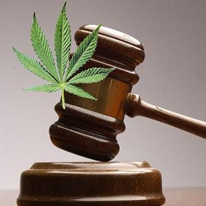 court-support-medical-marijuana-ronnie-chang