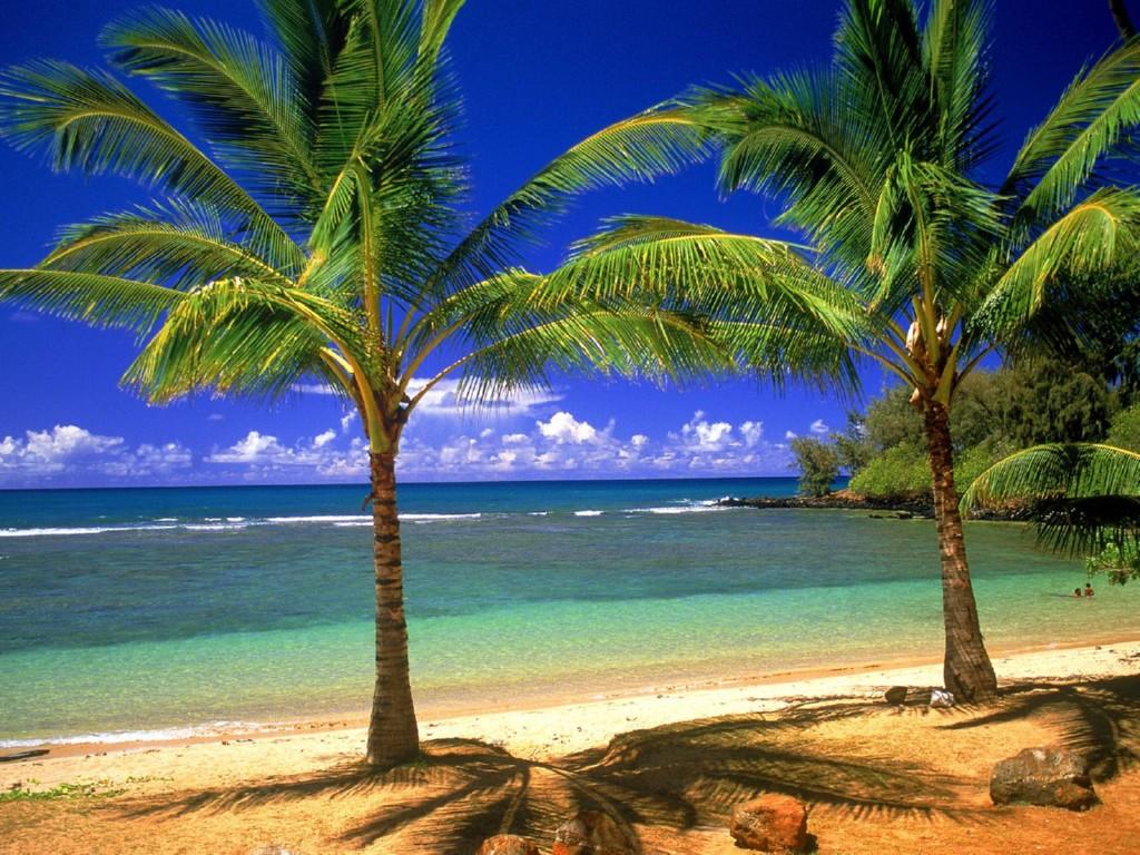 hawaiian desktop wallpaper images pictures becuo