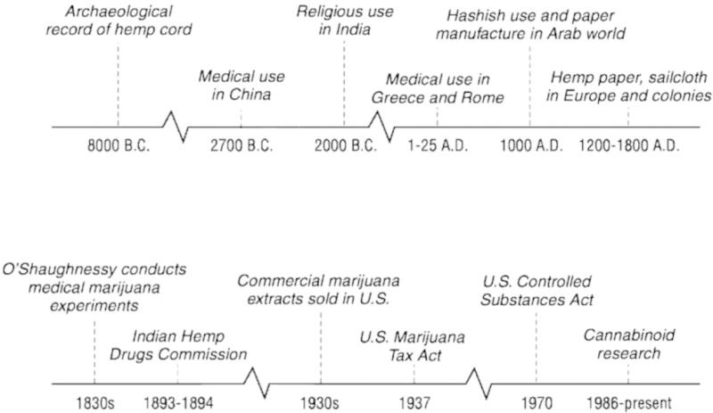 medical-marijuana-timeline.jpg