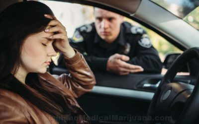 Michigan State Police to expand roadside drug testing pilot