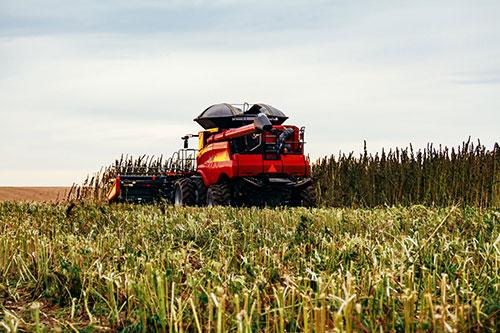 hemp-farming.jpg